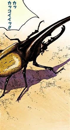 Jobin's Hercules Beetle