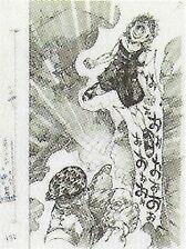 Wj-1994-35-p132.jpg
