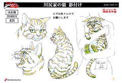 KawajiriCat-MS.jpg