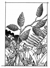 Chapter 173 Tailpiece.png