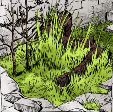 Young GE grass growing.png