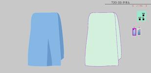 Towel-MSC.png