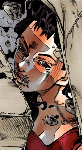 Diavolo's Mother Infobox Manga.png
