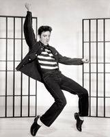 Elvis Presley Jailhouse Rock.jpg