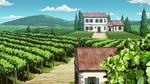 Vineyard anime.png