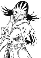 Vladimir Kocaqi Infobox Light Novel.jpg