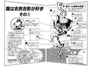 Chapter 396 Cover B Bunkoban.jpg