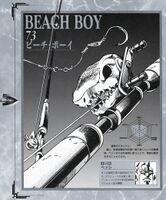Beach Boy.jpg