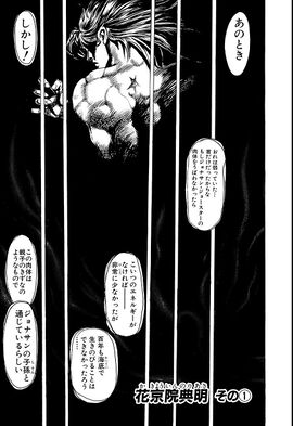 Chapter 118 Cover A Bunkoban.jpg