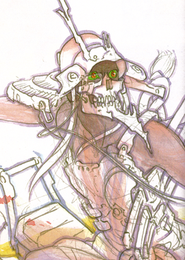 Berry Berry Skull Infobox Light Novel.png