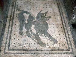 Cave Canem.jpg