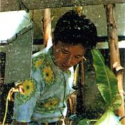 Araki66.png