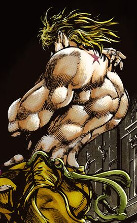 DIO Shadow SC Infobox Manga.jpg